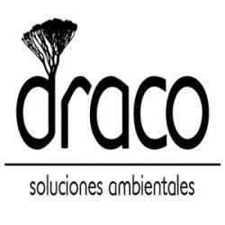 Draco-sol-amb-2-2-001-iloveimg-resized