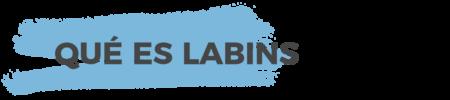 qué es LabINS